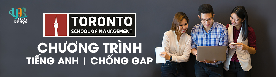 Pop Up Banner 930 x 180, Toronto School of Management, Yes Study Education Group, Nov 2020_EAP, Gap Year Programme