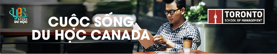 Pop Up Banner 930 x 180, Toronto School of Management, Yes Study Education Group, Nov 2020_Life in Canada with TSOM